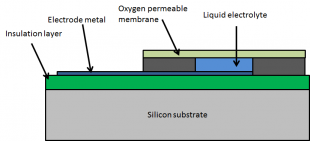A diagram of a Clark oxygen sensor